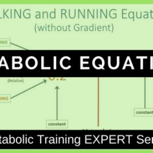 Metabolic Equations