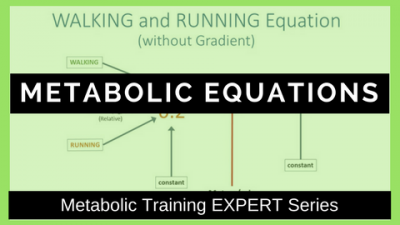 Metabolic Equations