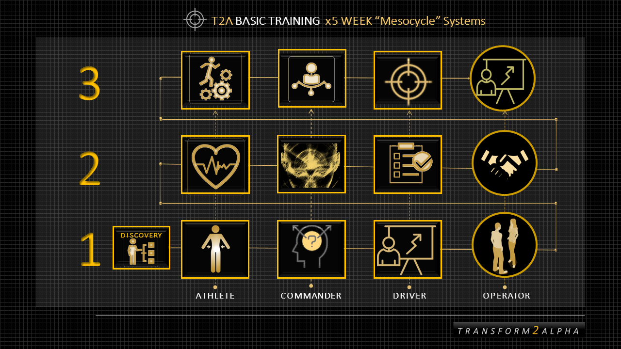 T2Alpha Training System