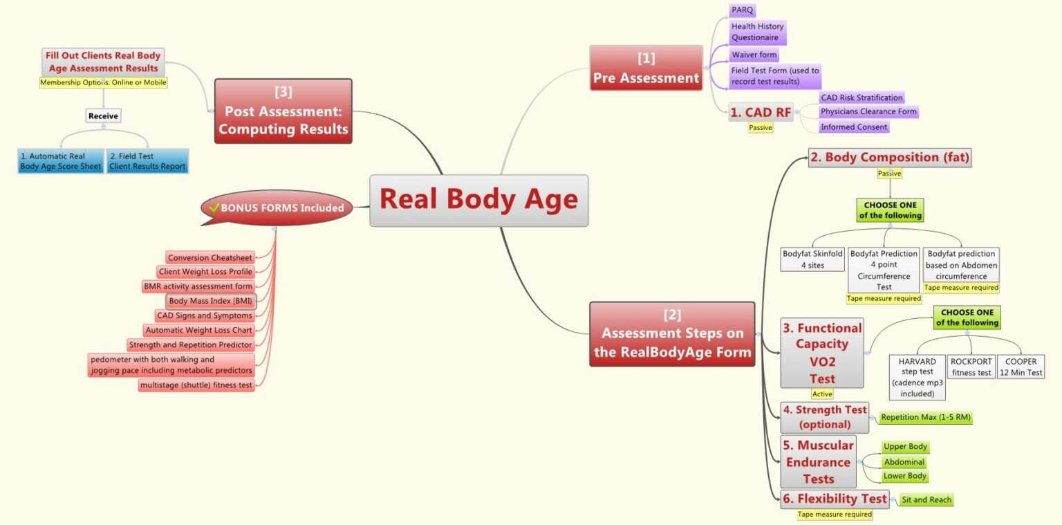 real_body_age_mind_map-1536x759